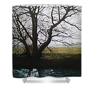 Trent Side Tree. Shower Curtain