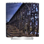 Tressel From The East Shower Curtain
