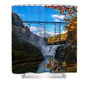 Tressel Over The High Falls Shower Curtain by Dick Wood