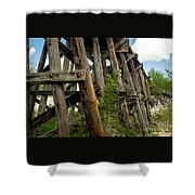 Trestle Timber Shower Curtain