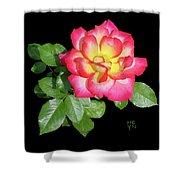 Tri-color Pink Rose2 Cutout Shower Curtain