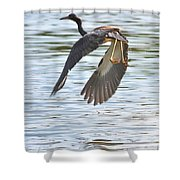Tri Colored Heron Over The Pond Shower Curtain