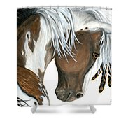 Tri Colored Pinto Horse Shower Curtain