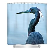 Tri Colored Pose Shower Curtain