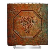Tribal Dragon Head In Octagon With Dragon Chinese Characters Distressed Finish Shower Curtain