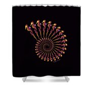 Tribal Seahorse Spiral Shell Shower Curtain