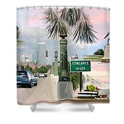 Tribute To Columbia Sc Shower Curtain
