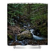 Trickling Spring Shower Curtain
