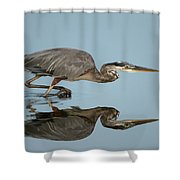 Tricolor Heron Hunting Shower Curtain