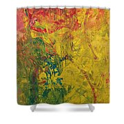 Trifid Nebula Messier 20 Shower Curtain