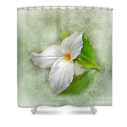Trillium Wildflower  Shower Curtain