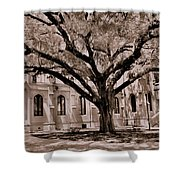 Trinity Episcopal Cathedral Court Yard Shower Curtain