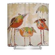 Trio Birds Shower Curtain