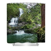 Triple Kopii Falls  Shower Curtain