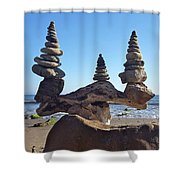 Triple Stack On Driftwood Shower Curtain