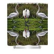 Triplets In Reflection Shower Curtain