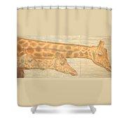 Triptych Giraffes General View Shower Curtain