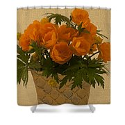 Trollius  Shower Curtain