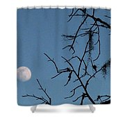 Trompe L Oeil Moon Shower Curtain