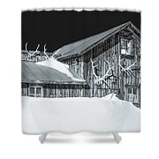 Trophies Mounted On Nostalgia, Selenium Tone  Shower Curtain