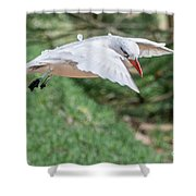 Tropic Bird Shower Curtain