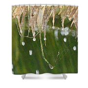 Tropical Bali Rain Shower Curtain