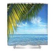 Tropical Beach Shower Curtain by Carlos Caetano