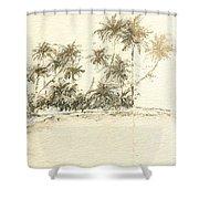 Tropical Beach Drawing Shower Curtain