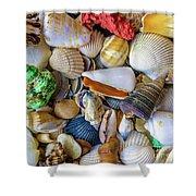 Tropical Beach Seashell Treasures 1550b Shower Curtain
