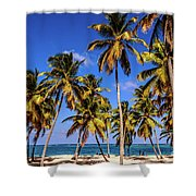 Palms On The Beach Shower Curtain