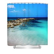 Tropical Blues Shower Curtain
