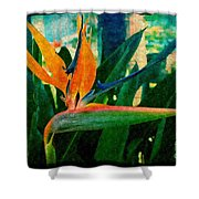 Tropical Eden Shower Curtain