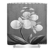 Tropical Elegance In Black And White Shower Curtain