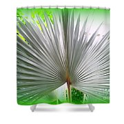 Tropical Fan Shower Curtain