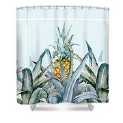Tropical Feeling  Shower Curtain by Mark Ashkenazi