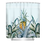 Tropical Feeling  Shower Curtain