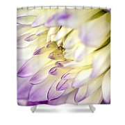 Tropical Flower 11 Shower Curtain