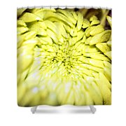 Tropical Flower 12 Shower Curtain