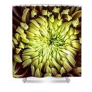 Tropical Flower 13 Shower Curtain