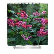 Tropical Flower Flow Shower Curtain