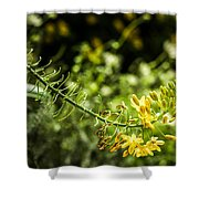 Tropical Flowers 7 Shower Curtain