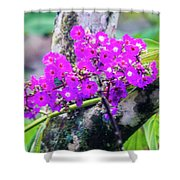 Tropical Flowers Of Costa Rica Shower Curtain