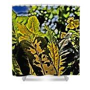 Tropical Foliage A-la Monet Shower Curtain