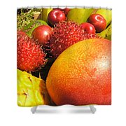 Tropical Fruit Delight Shower Curtain