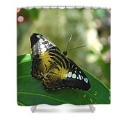 Tropical Garden Beauty Shower Curtain