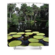 Tropical Hopscotch Shower Curtain