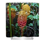 Tropical Mystery Plant Shower Curtain