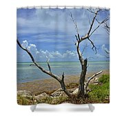 Tropical Oasis Shower Curtain