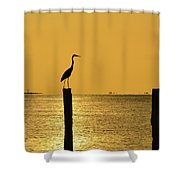 Tropical Orange Shower Curtain