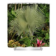 Tropical Palm Shower Curtain